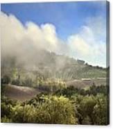 Tuscan Field In Fog Canvas Print