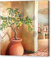 Tuscan Lemon Tree Canvas Print