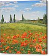 Tuscan Poppies-b Canvas Print