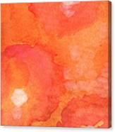 Tuscan Roses Canvas Print