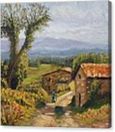 Tuscany Farm Road Canvas Print