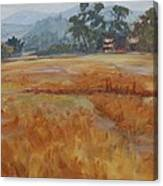 Tuscany Flashback4 Canvas Print