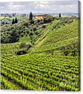 Tuscany-italy Canvas Print
