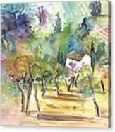 Tuscany Landscape 05 Canvas Print
