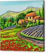 Tuscany Lavender  Canvas Print