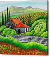Tuscany Poppies Canvas Print