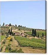 Tuscany Vineyard Canvas Print