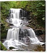 Tuscarora Falls Canvas Print