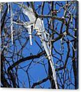 Twigs And Ice Canvas Print