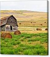 Twisted Barn On Canadian Prairie, Big Canvas Print