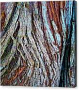 Twisted Colourful Wood Canvas Print