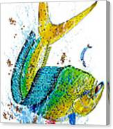 Twisted Mahi Canvas Print