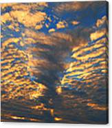 Twisted Sunset Canvas Print
