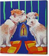 Two Border Terriers Together Canvas Print
