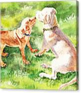 Two Brothers Labradors Canvas Print