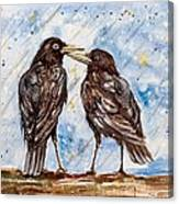 Two Crows On A Rainy Day Canvas Print