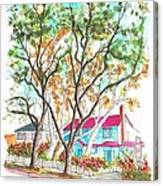 Two Dark Trees In West Hollywood -california Canvas Print