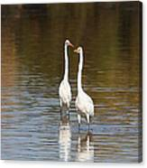 Two Egrets In The Pond Canvas Print