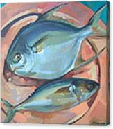 Two Fish On A Copper Platter Canvas Print