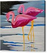 Two Flamingo's In Acrylic Canvas Print
