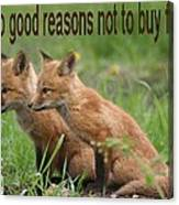 Two Good Reasons Not To Buy Fur Canvas Print