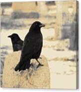 Two Graveyard Blackbirds Canvas Print
