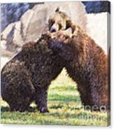 Two Grizzly Bears Ursus Arctos Play Fighting Canvas Print