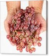 Two Handfuls Of Red Grapes Canvas Print