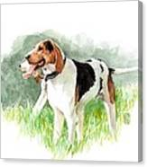 Two Hounds Canvas Print
