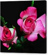 Two In Pink Canvas Print