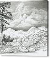 Two Junipers - Starr Mountain Canvas Print