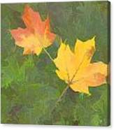 Two Leafs In Autumn Canvas Print