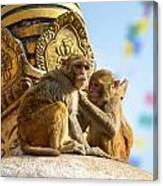 Two Macaques On Top Of Chorten Canvas Print