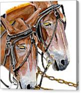 Two Mules - Enhanced Color - Farmer's Friend Canvas Print
