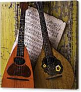 Two Old Mandolins Canvas Print