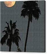 Two Palms And The Moon Canvas Print