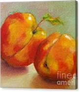 Two Peaches Canvas Print