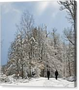 Two People Doing A Walk In Beautiful Forest In Winter Canvas Print