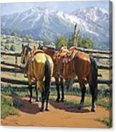 Two Saddle Horses Canvas Print