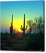 Two Saguaro Canvas Print