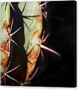 Two Shades Of Cactus Canvas Print