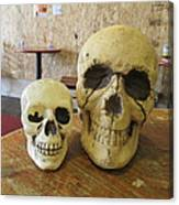 Two Skulls - At The Cafe Canvas Print