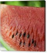 Two Slices Of Watermelon Canvas Print