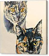 Two Torti's Canvas Print