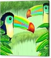 Two Toucans Canvas Print