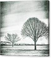 Two Trees In A Field Canvas Print