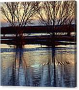 Two Trees In The Bosque Canvas Print