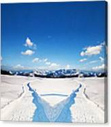 Two Ways Choice In Winter Canvas Print