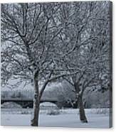 Two Winter Trees Canvas Print