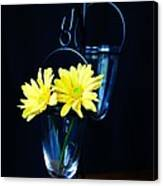 Two Yellow Daisies Canvas Print